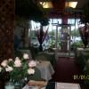 Cedar's Cafe Melbourne FL