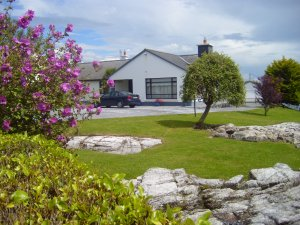 Quiet Country Home in West of Ireland Galway, Ireland Bed & Breakfasts