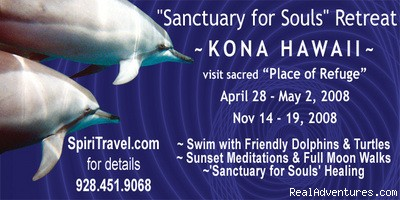 Spinner Dolphins  - Spiritual Travel Adventures