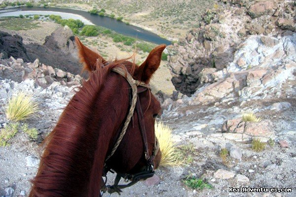 The View | Image #2/20 | Horse trekking into the Andes