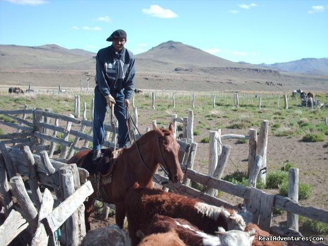 Do not try this at home | Image #6/20 | Horse trekking into the Andes