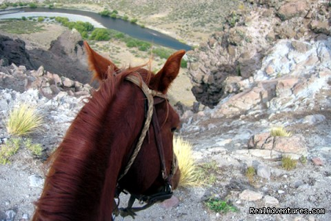 The View - Horse trekking into the Andes