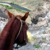 Horse trekking into the Andes