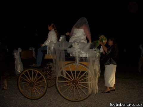 Bride & Groom arrives in horse drawn carriage