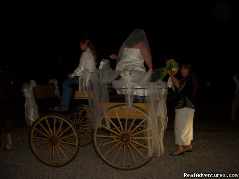 Bride & Groom arrives in horse drawn carriage - Cart Barn Inn