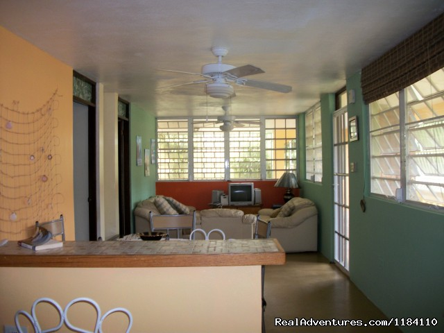 - Tropical Beach Rental Home Steps From The Beach