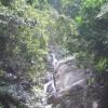 El Yunque(from Naguabo Site)