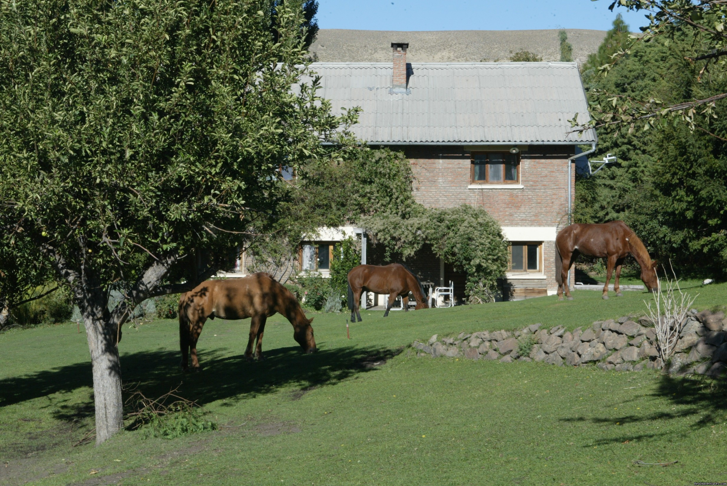 Tha main house | Image #4/9 | Horseback riding