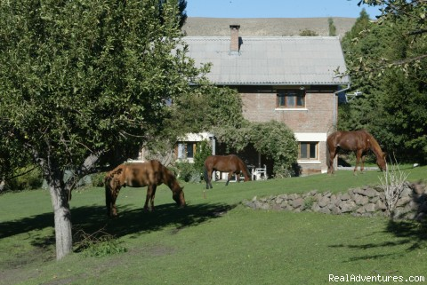 Tha main house - Horseback riding