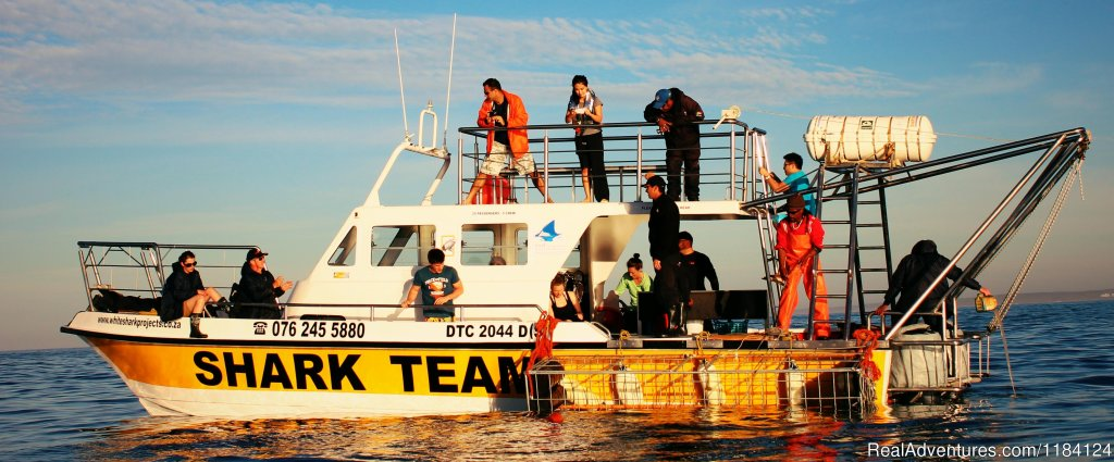 Shark Team Boat | Image #2/8 | Shark Cage Diving in South Africa