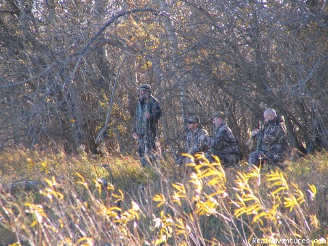 - World Class Waterfowl Hunting Alberta