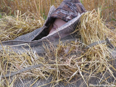 My daughter Kate sleeping in the blinds. (#7 of 26) - World Class Waterfowl Hunting Alberta