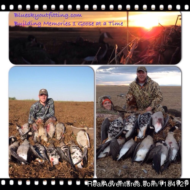 Awesome times at Bluesky Outfitting (#20 of 26) - World Class Waterfowl Hunting Alberta
