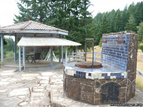 Barbecue area/pavilion -  Oregon Wilderness Castle Retreat