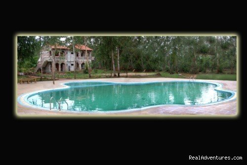 Image #17/17 | Mogli wildlife resort, Kanha and Bandhavgarh,India