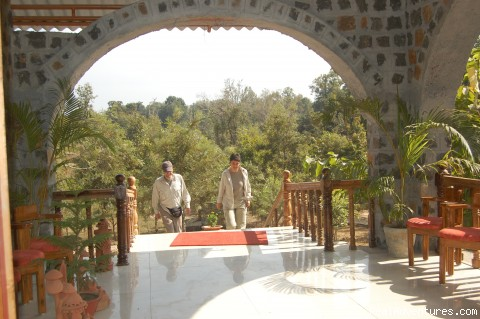 View for forest cover in resorts dinning - Mogli wildlife resort, Kanha and Bandhavgarh,India