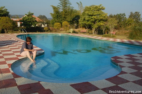Swimming pool - Mogli wildlife resort, Kanha and Bandhavgarh,India