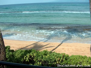 - Maui Sands - Ocean Front 2-bed 1-bath Condo