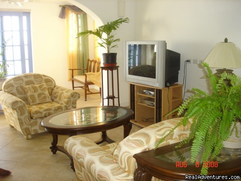 Livingroom - Picturesque Beach Front Barbados 2 - Bdrm Condo