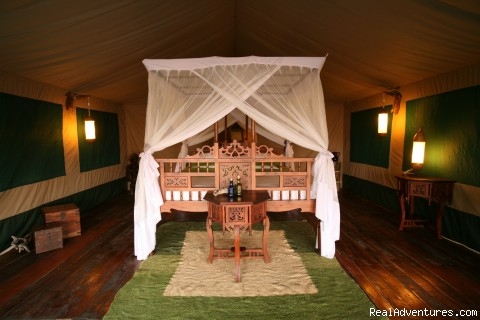 Tents at Katuma Bush Lodge - Chimpanzee Adventures in Western Tanzania
