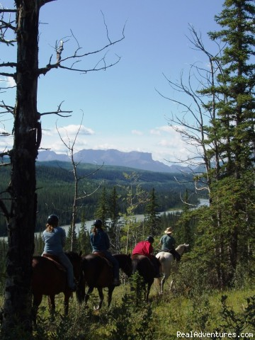 Athabasca River Ridge Trail - Old Entrance Trail Rides near Jasper National Park