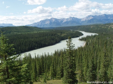Athabasca River and Alberta Rockies - Old Entrance Trail Rides near Jasper National Park