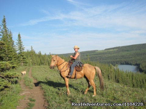 Athabasca River Ridge Trail (#7 of 12) - Old Entrance Trail Rides near Jasper National Park