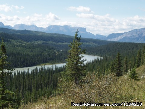 View Point - Old Entrance Trail Rides near Jasper National Park