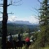 Old Entrance Trail Rides near Jasper National Park