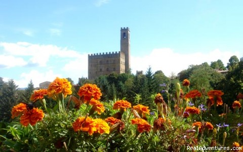 Tuscan Landscape and Colors up close - Visit the 7 Chakras in Beautiful Tuscany