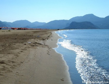 Iztuzu Beach - British operated Boutique Hotel & Bar