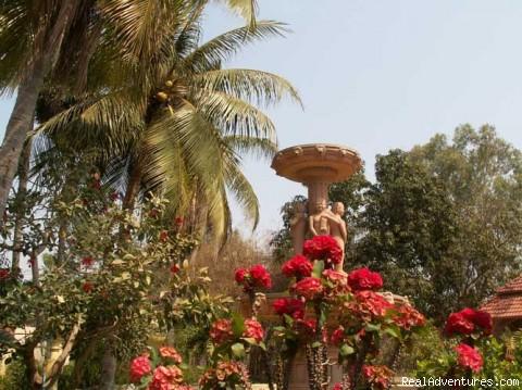 Garden - Queen Villa Ankgor