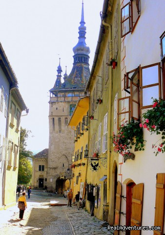 Clock Tower in Sighisoara, view from inside the citadel - Horse Riding Trips at Calimani Equestrian Centre