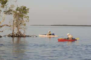 National Wildlife Refuge Kayak & Boat Tours Florida Keys, Florida Eco Tours