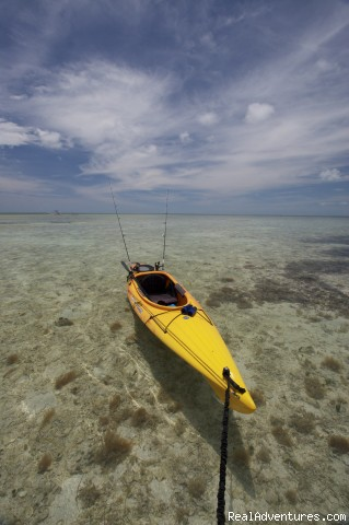 contents keys are the most remote, pristine and aesthetic ke (#2 of 11) - National Wildlife Refuge Kayak & Boat Tours