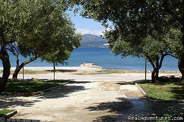 - Apartments  Peninsula Peljesac
