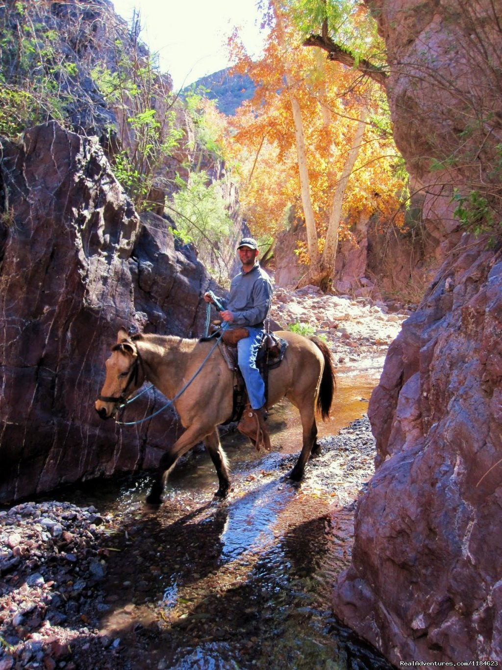 Image #6/26 | Sonoran Canyonlands Hiking and/or Riding Adventure