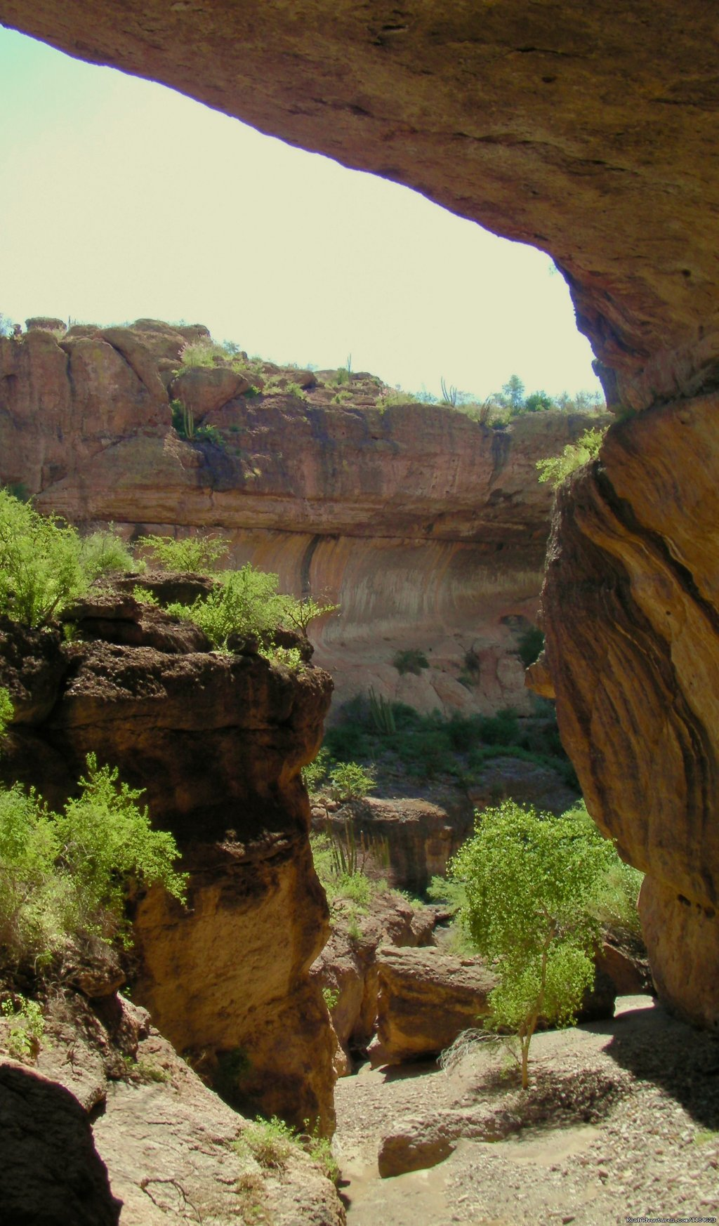 Image #10/26 | Sonoran Canyonlands Hiking and/or Riding Adventure