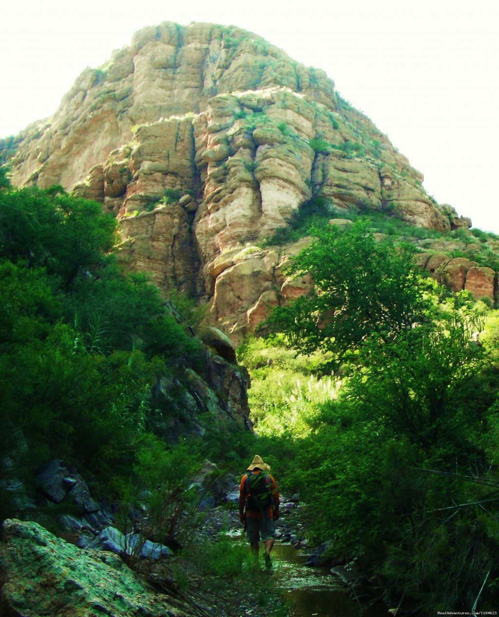 Image #22/26 | Sonoran Canyonlands Hiking and/or Riding Adventure