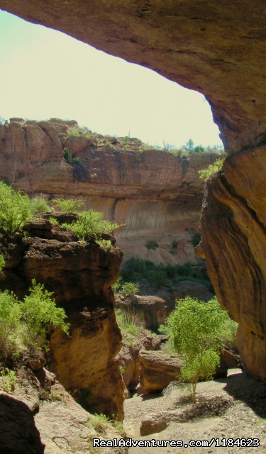 - Sonoran Canyonlands Hiking and/or Riding Adventure