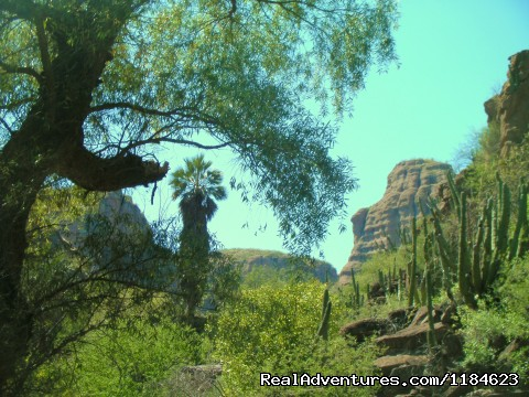 Image #21 of 26 - Sonoran Canyonlands Hiking and/or Riding Adventure