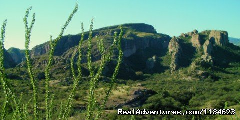 Image #19 of 26 - Sonoran Canyonlands Hiking and/or Riding Adventure