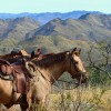 Sonoran Canyonlands Hiking and/or Riding Adventure