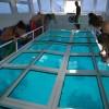 Wakeboard And Water Ski School Photo #1
