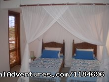 Two Single Beds , Air Co And Mosquito Net - Brazil, Trancoso: apartment in golf condo at beach