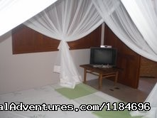 T.v. In One Suite - Brazil, Trancoso: apartment in golf condo at beach