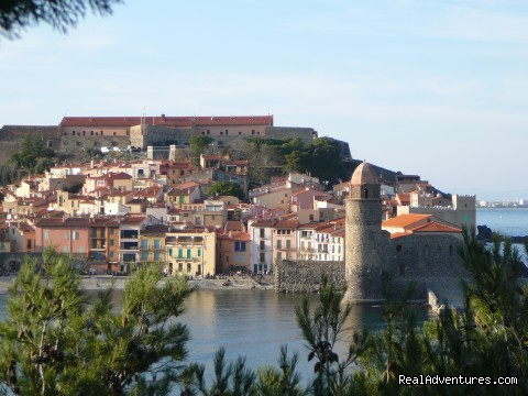 collioure (#2 of 9) - French Language Immersion