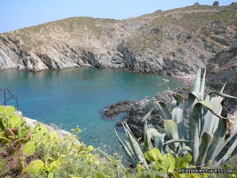 Banyuls sur mer (#4 of 9) - French Language Immersion