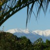 The Canigou