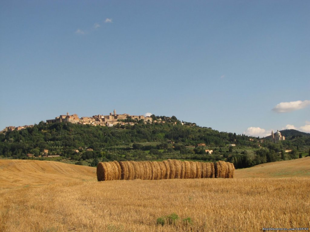 Montepulciano | Image #13/17 | Learn Italian in Tuscany @ Il Sasso